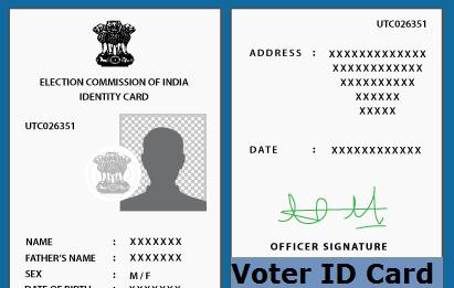 Voter ID Application Status