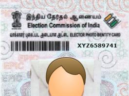 CEO Tamil Nadu Voter ID Card election.tn.gov.in