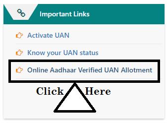 Online Aadhaar - Verified UAN